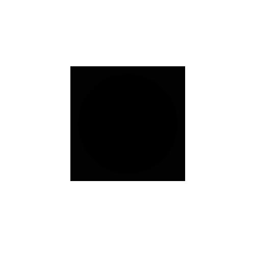 Разработка логотипа для интернет-магазина авто тюнинга в студии Андрея Мельникова
