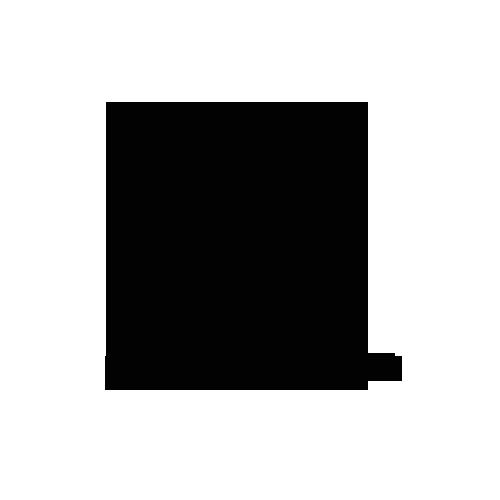 Разработка логотипа для мебельной фабрики Середрика в студии Андрея Мельникова