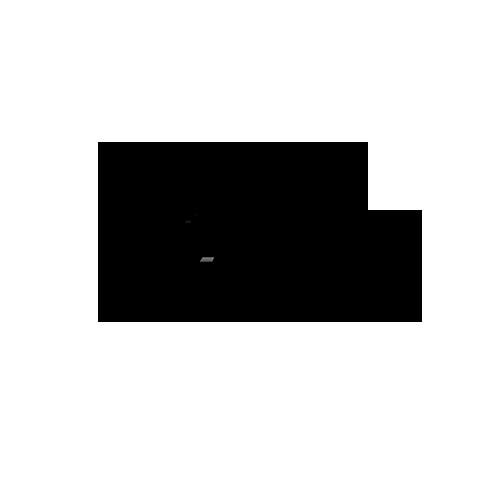 Разработка логотипа для проката автомобилей Snap auto в студии Андрея Мельникова