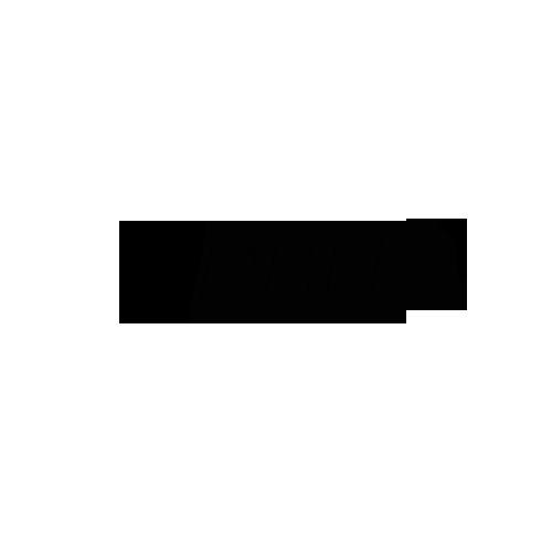 Разработка логотипа для IT компании в студии Андрея Мельникова